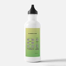 Genetics of meiosis Water Bottle