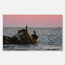 Cape Cod Birds at Dusk Sticker (Rectangle)