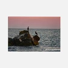 Cape Cod Birds at Dusk Rectangle Magnet