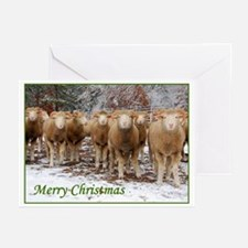 Horned Ewes Christmas Greeting Cards