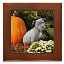 Halloween pitbull puppy Framed Tile