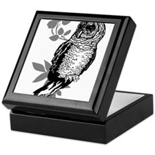 OYOOS Owl design Keepsake Box