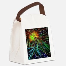Fireworks Galore Canvas Lunch Bag