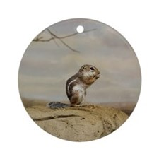 Gopher002 Round Ornament
