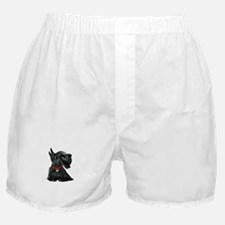 Scottish Terrier 1 Boxer Shorts