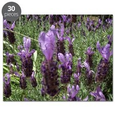 French Lavender Puzzle