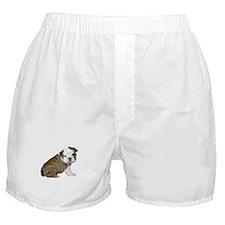 English Bulldog Puppy1 Boxer Shorts