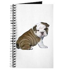 English Bulldog Puppy1 Journal