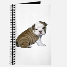 English Bulldog Puppy1 Journal