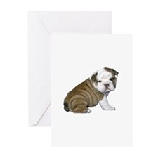 English Bulldog Puppy1 Greeting Cards (Pk of 20)