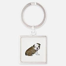 English Bulldog Puppy1 Square Keychain
