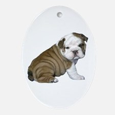 English Bulldog Puppy1 Ornament (Oval)