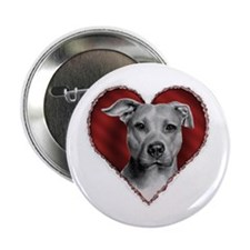 "Pit Bull Terrier Valentine 2.25"" Button (100 pack)"