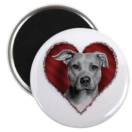 """Pit Bull Terrier Valentine 2.25"""" Magnet (10 pack)"""
