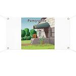 Pomeranian On Granite (Pomgranite) Banner