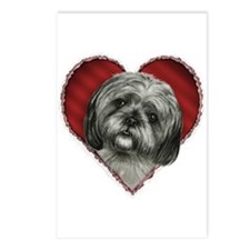 Shih Tzu Valentine Postcards (Package of 8)