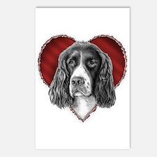 Springer Spaniel Valentine Postcards (Package of 8