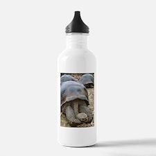 Sleepy Turtle Water Bottle