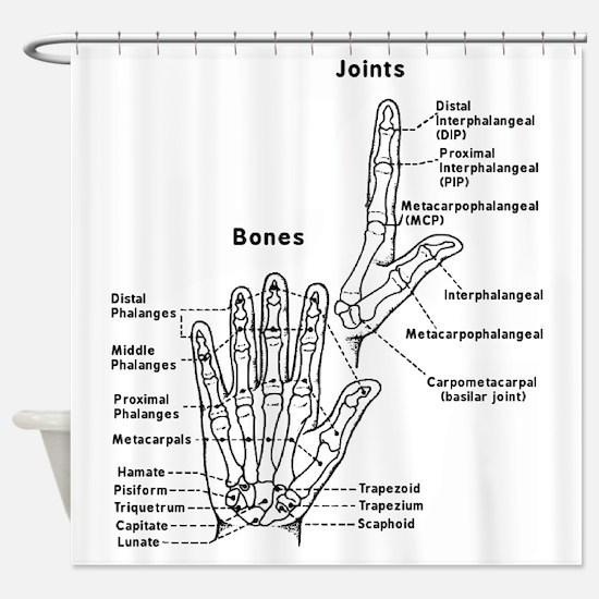 hand anatomy Shower Curtain
