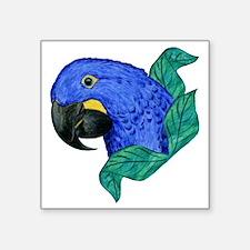 "Hyacinth Macaw Square Sticker 3"" x 3"""