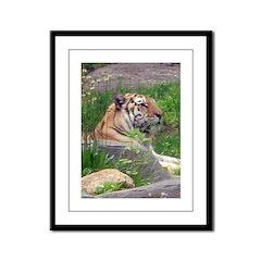 tiger 5 Framed Panel Print