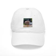 asian elephant 2 Baseball Cap