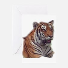 tiger 6 Greeting Cards (Pk of 10)