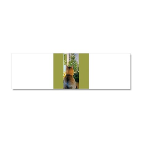 Cat And Christmas Tree Car Magnet 10 X 3