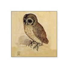 "The Little Owl by Durer Square Sticker 3"" x 3"""