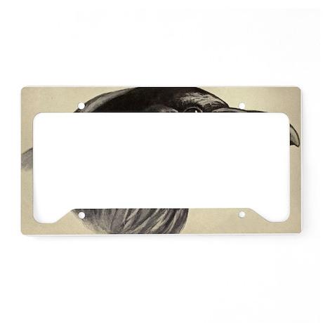 Raven License Plate Holder