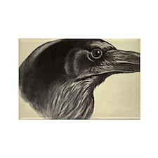 Raven Rectangle Magnet