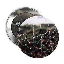 "Dew On A Spiderweb 2.25"" Button (10 pack)"