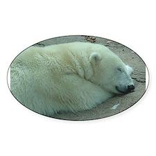 polar bear 3 Oval Decal
