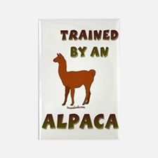 Trained by an Alpaca Rectangle Magnet