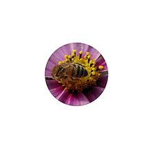 Bee Cosmo Mini Button