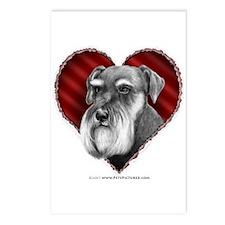 Schnauzer Valentine Postcards (Package of 8)