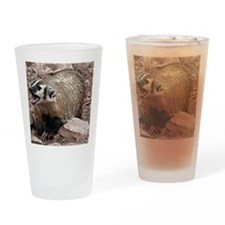 Snarling Fighting Badger Drinking Glass