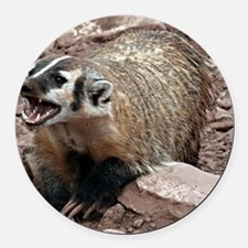 Snarling Fighting Badger Round Car Magnet