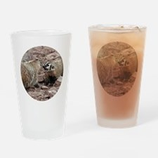 Snarling and Fierce Badgers Drinking Glass