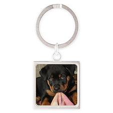 Rottweiller Puppy Square Keychain