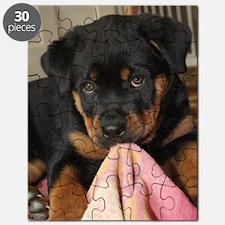 Rottweiller Puppy Puzzle