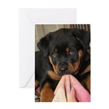 Rottweiller Puppy Greeting Card
