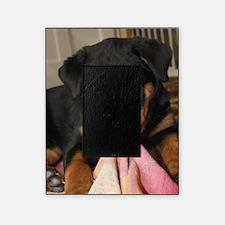 Rottweiller Puppy Picture Frame