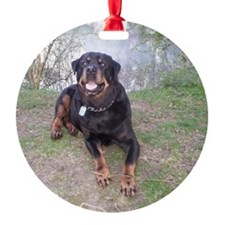 Rottweiller Ornament