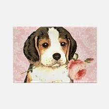 Beagle Rose Rectangle Magnet