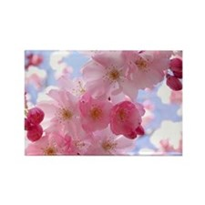 Cherry Blossom Magnets