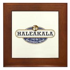 Haleakala National Park Framed Tile
