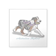 Australian Shepherd Blue Merle Sticker
