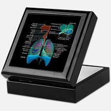 Respiratory system complete dark button Keepsake B