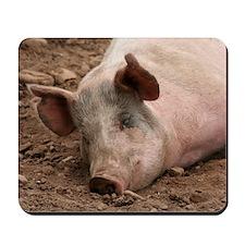 Sleeping Pig Mousepad